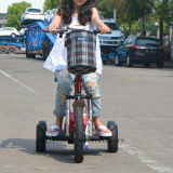 Motorino elettrico di mobilità delle tre rotelle con Ce