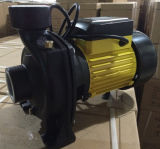 Wedo Highquality High Capacity Hf/6br Series Water Pump per Agriculture Transfer (2HP)