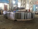 Het Toestel van de ring voor de Molen die van de Roterende Oven en van de Bal wordt gebruikt