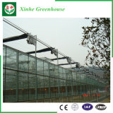 Serre chaude en aluminium en verre de profil d'agriculture