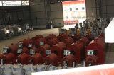 اقتصاد مشواة آلة تدفئة جانبا [كل] وحطب/بذرات مشواة آلة