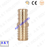 Hot Sale Brass Male Connector Pipe Fitting avec haute qualité