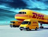 Международные воздушные перевозки и Express консолидировать Service-Air судоходства (E064)