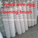 De nylon Borstel van de Rol van het Ei van de Draad Schoonmakende (yy-321)