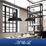 Heiße Verkaufs-industrielle Großhandelsart-hängende Lampe