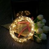 100 LED Copper Lights String per Christmas Wedding