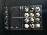 Fori di plastica del cassetto 6 dell'uovo di quaglie dell'imballatore dell'uovo della bolla della copertura superiore