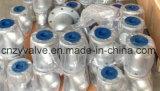 "API/DIN/JIS A216 Stahl Form Wcb 4 "" Dn100 Y Grobfilter"