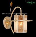 De Verlichting van de Lamp van de Muur van de Klem van de Tegenhanger van het glas (9371/1W)
