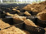 Geocélula de reforço HDPE de plástico para protecção contra quebra-mares / declive