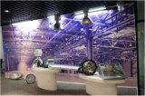 luz elevada ESCONDIDA 150With250With400W do louro para a iluminação industrial/fábrica/armazém (SLH400)