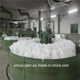 Ne 30/1 Virgin Polyester Spun Yarn