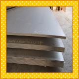 Chapa de aço inoxidável de ASTM 304/placa para a indústria