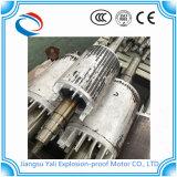 Motore asincrono a tre fasi della LY per la fornace di trattamento termico