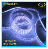 Éclairage de bande LED 5050SMD RGBW avec homologation ETL
