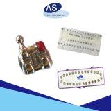 MIM alta qualità materiale della parentesi del metallo di ortognatodonzia dentale