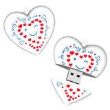 Cadeau de surprise pour la mémoire de flash USB de cadeau de compagnie