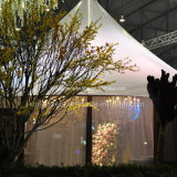 رفاهية كبير خارجيّة عمل خيمة لأنّ عرس يزيّن مع سقف بطانات وستر