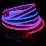 LED 네온 코드 빛을 쫓는 RGB 디지털 화소