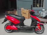 """""""trotinette"""" elétrico do pneu gordo adulto de 1000W 1500W 2000W Aguila Ava para a venda (CCE-E8)"""