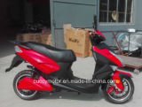 Motorino elettrico della gomma grassa adulta del lusso 1000W 1500W 2000W da vendere (CCE-E8)