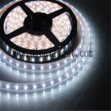 Decoración al aire libre de la tira de Flexibe 3528 LED