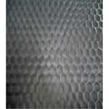 Âme en nid d'abeilles en aluminium pour l'isolation de porte de matériaux de construction (HR608)