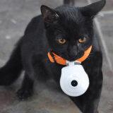 Рекордер видеокамеры LCD кота собаки камеры любимчика горячего вспомогательного оборудования ворота продуктов любимчика миниый