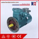 Motor de frequência variável com prova de chamas com certificação CE
