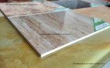 UV Coated панели стены Faux конструкции мрамора листов пластмассы изолированные камнем