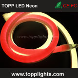 12V LED Neon Tube Precio LED Neon Flexible Light