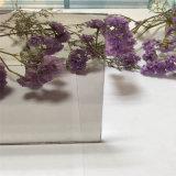 Europeo de 8 mm para la decoración de vidrio de color gris/edificio