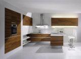 De beste Matte Fabriek van de Betekenis polijst het Kabinet van Keukens