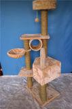 マルチ版の方法猫の樹上の家、木をスクラッチしている猫