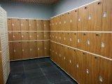 шкаф локера ширины 380mm для клуба Fitess