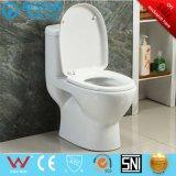 Toletta Closed di vendita della piccola della stanza da bagno acqua calda della mobilia