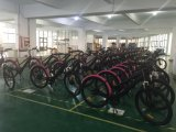 Elektrisches Fahrrad des Gut-26 des Zoll-350W auf Förderung