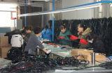 Igualdade de TS6 junta fabricados na China com o fabricante em Xangai