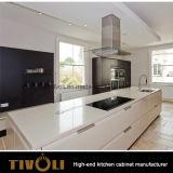 予算の安いメラミン台所デザイン台所家具(AP098)