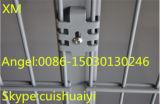 La Chine fournisseur Treillis métallique soudé décoratifs double clôture de jardin
