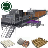 Pulpa de papel cartón de huevos Hghy máquina de moldeo China