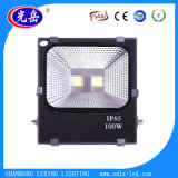 Luz de inundación recargable del fabricante IP65 100W LED de China