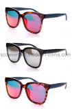 الصين بائع جملة صاحب مصنع يشخّص [تك] [تر90] نظّارات شمس