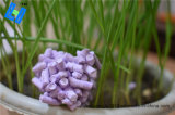 Tofu Cat Litter -- Lavender Scent for Cat Toilet