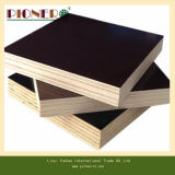 Precio barato película negra enfrenta Fabricante de madera contrachapada