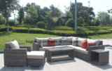 El sofá de mimbre redondo de lujo con la mesa de centro del almacenaje fijó la rota 0158 5m m redonda