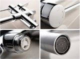 Rubinetto indipendente della vasca dell'acciaio inossidabile della stanza da bagno (AF9106-2)