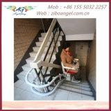 Elevatore montato su veicolo &Disabled-Usato Elder-Usato