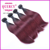 Ombre Color Brazilian Straight Virgin Hair Extension de cheveux humains