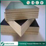 A película da construção enfrentou a madeira compensada WBP/madeira compensada marinha (Poplar, Combi, o núcleo do vidoeiro)